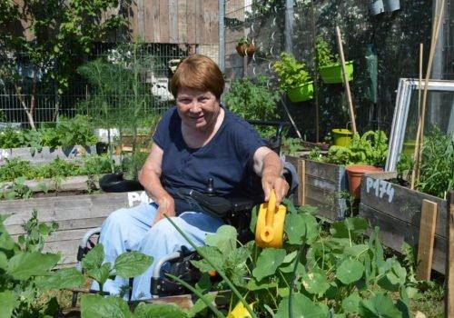 Eine Dame im Rollstuhl gießt Kapuzinerkresse in einem Hochbeet