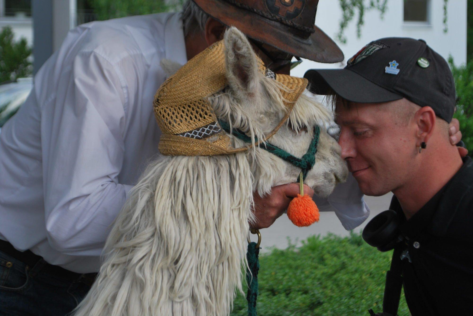 Ein Rehabilitand des P.A.N. Zentrums genießt die Nähe des zahmen Alpakas und berührt es mit dem Kopf - Nase an Nase.