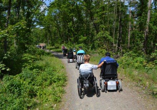 Die Wandergruppe in Potsdam: Gruppe Rollstuhlfahrerinnen und fahrer fährt einen leicht ansteigenden Schotterweg im Wald hinauf. Links und rechts sind überall Bäume und Pflanzen.