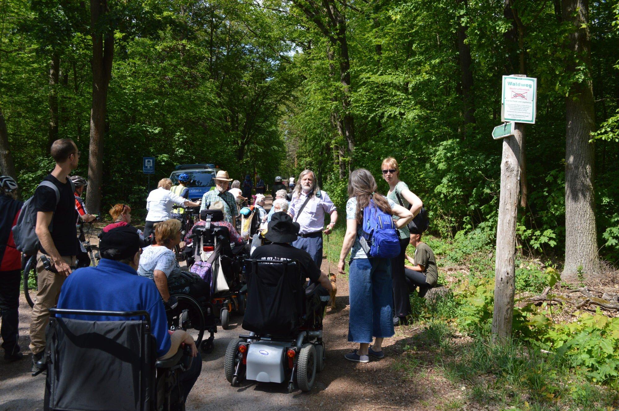 Die Gruppe lauscht am Waldwegesrand den Ausführungen des Wanderleiters.
