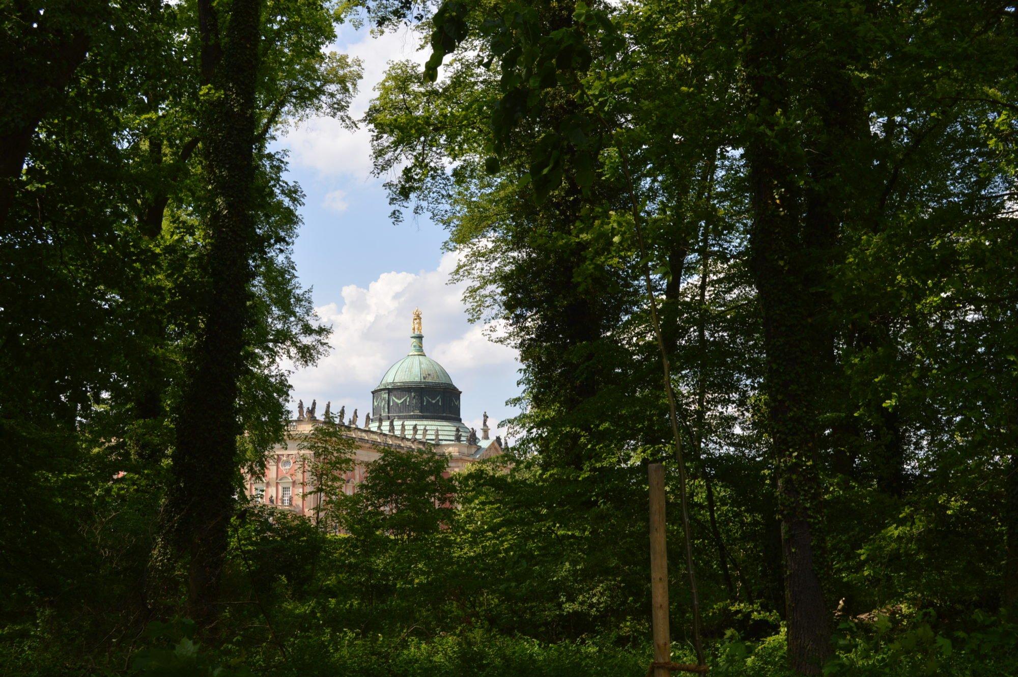 Blick auf ein altes Schlossgebäude, durch Bäume hindurch fotografiert.