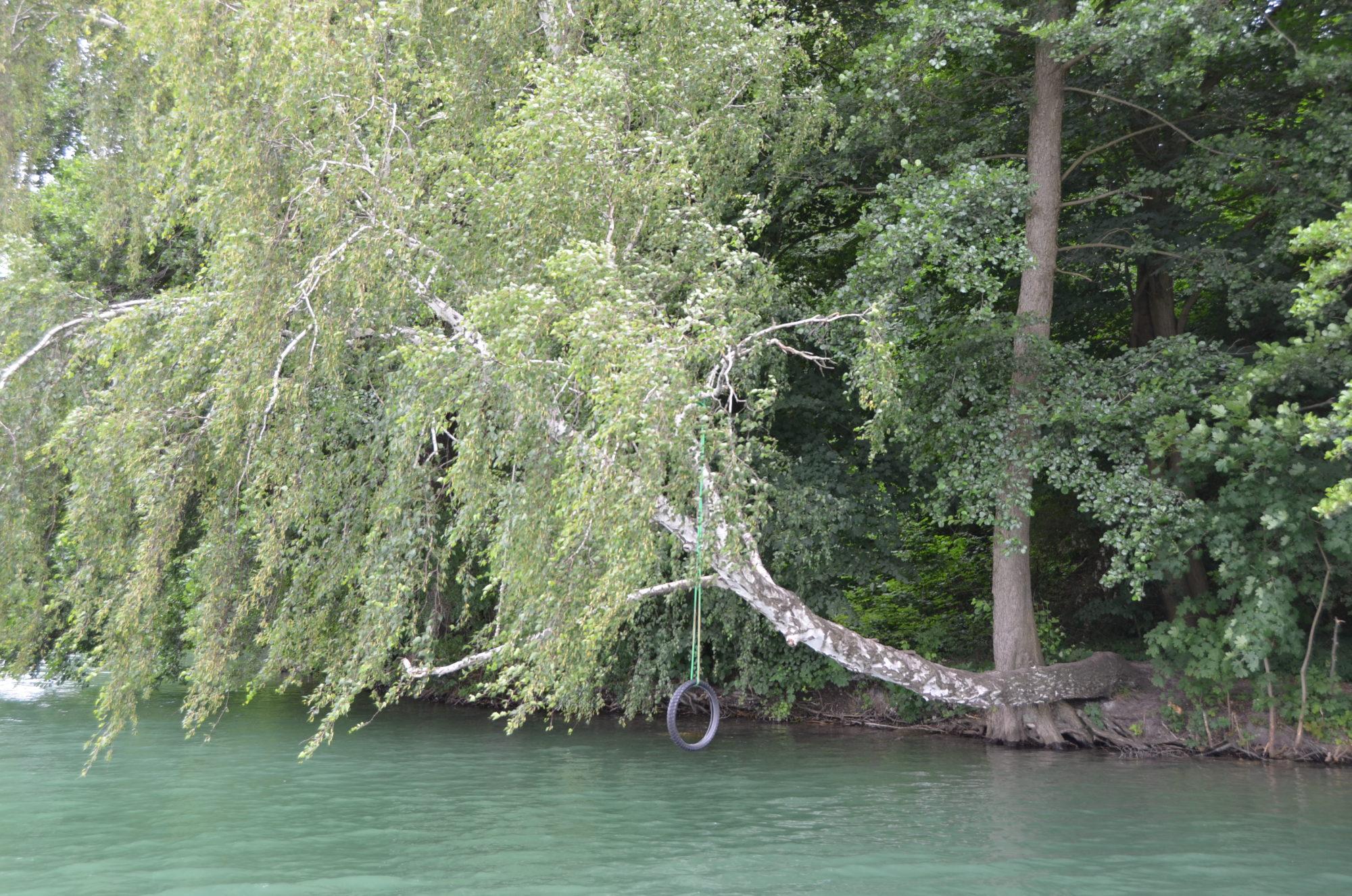 An einem waagerechten Baum der auf den See ragt hängt ein Reifen an einem Seil. Kinder spielen hier häufig.