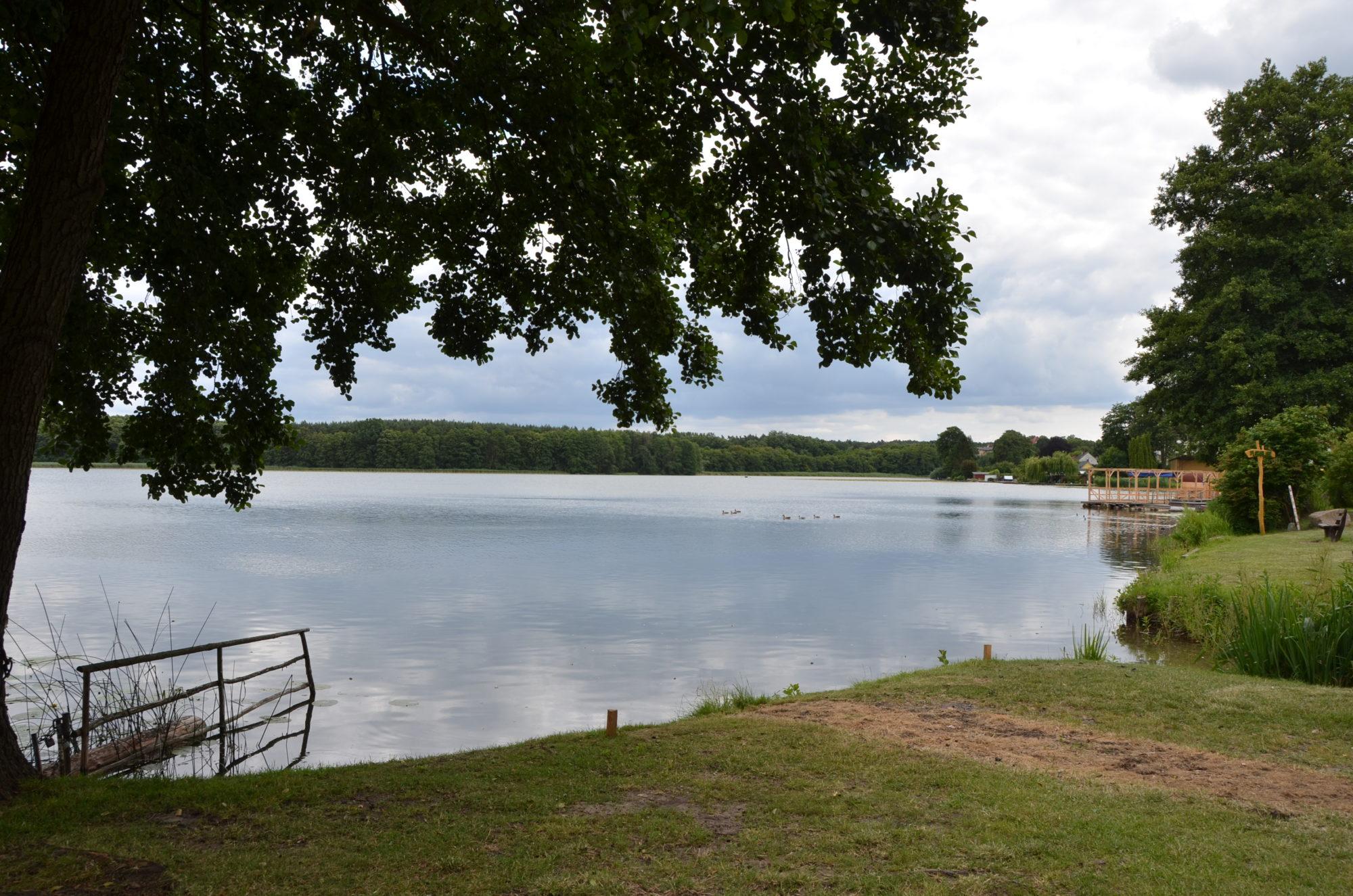Blick auf den Pfuhl See.