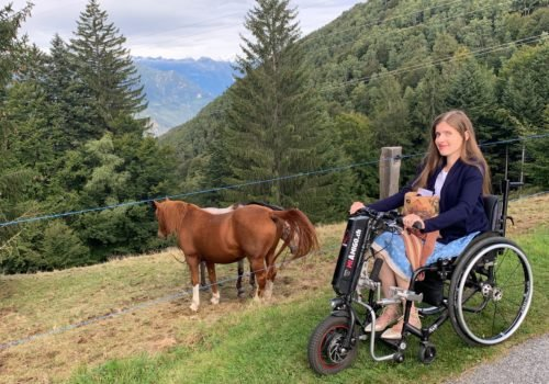 Adina steht mit ihrem Rollstuhl inklusive Zuggerät in den Bergen. Vor ihr stehen zwei Pferde auf der Weide.