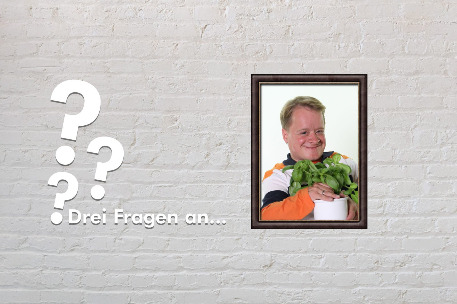 Fotomontage: Eine weiße Steinwand - darauf ein Rahmen, in den ein Bild von Volker Westermann montiert ist, daneben der Schriftzug Drei Fragen an... und drei Fragezeichen.
